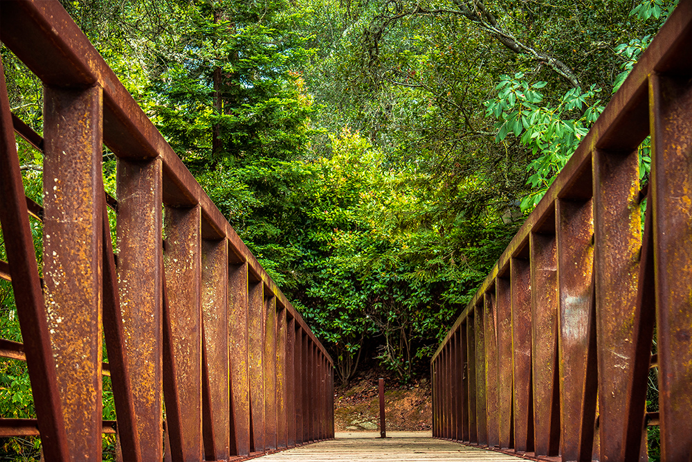 Walking Trail and Bridge El Dorado Hills CA_01